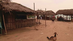 Tilt WS of palm huts on a beatch in Rameswaram, India Stock Footage