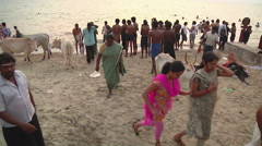 WS of cows and people on a beach in Rameswaram, India Stock Footage