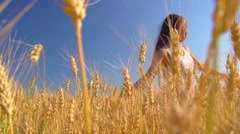 Beauty Young Woman with Healthy Long Hair Spinning and laughing on wheat field. Stock Footage
