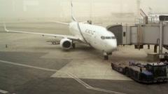 ElAl Israeli national airline plane prepares for departure, Tel-Aviv, Israel Stock Footage