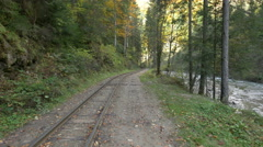 Mocanita railroad near fir trees and Vaser valley Stock Footage