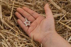 David's star in a hand Stock Photos