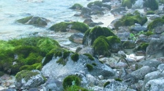 Hazy river in the morning Stock Footage