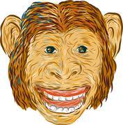 Chimpanzee Head Front Isolated Stock Illustration