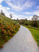 Autumn colours at Tarn Hows, Cumbria, UK Stock Photos