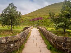 Upper Derwent Valley, Derbyshire, Uk - stock photo