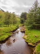 Upper Derwent Valley, Derbyshire, Uk Stock Photos