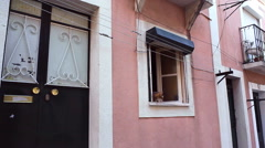 Cat looks out the window, atmosphere in Lisbon, Portugal Stock Footage