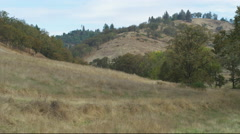 Sparsely wooded hills in late summer, Oregon Stock Footage