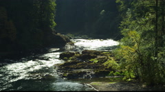 Sunlight on water in the forested North Umpqua River Canyon, Oregon Stock Footage