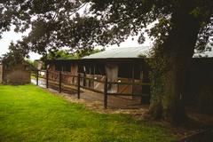View of stable in farm Stock Photos