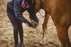 Female rider cleaning horseshoe Stock Photos