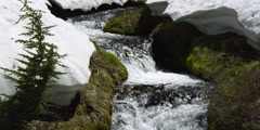 Close view of mountain stream rushing between mossy banks under thawing snow Stock Footage