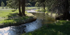 Mountain stream meandering through a meadow - stock footage