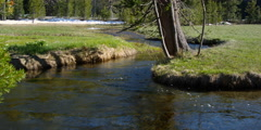 Stream flowing between curving grassy banks - stock footage