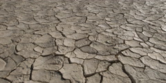 Right pan close-up of cracked, parched earth - stock footage