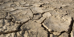 Close-up of raindrops hitting parched earth - stock footage