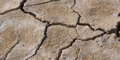 Close-up of raindrops puddling on dry cracked earth Stock Footage