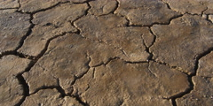 Puddled rain water evaporating on dry cracked earth, time lapse - stock footage