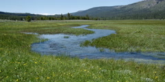Swift stream meandering through green meadow - stock footage