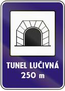 Road sign used in Slovakia - Tunnel. Tunel means tunnel Piirros