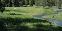 Right pan of grassy meadow and mountain stream Stock Footage