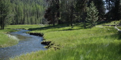 Left pan of grassy banks on both sides of mountain stream Stock Footage