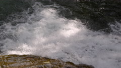 Salmon leaping up a low falls on a mountain stream Stock Footage