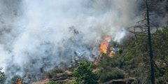 Brush fire spreading up a rocky slope with smoke obscuring already blackened - stock footage