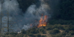Blaze advancing across brushy slope as smoke veils flames in timber behind - stock footage