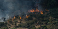 Firefighters digging a fire line across path of  blaze burning in brush and Stock Footage