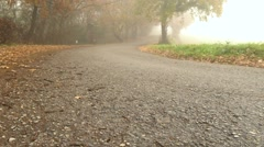 Foggy empty road. Dolly shot. Stock Footage