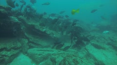 Coral reef scenics of the Sea of Cortez - stock footage