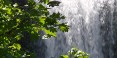 Sunny maple leaves in left foreground with close soft-focus waterfall at right Stock Footage