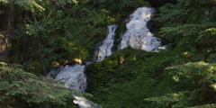 Bunch Falls cascading through forest in Olympic Peninsula Stock Footage