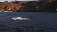 Stock Video Footage of Flying close past the rugged Catalina coastline. Shot in 2010.