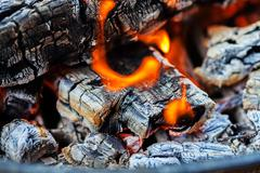 Wood fire - stock photo
