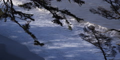 Looking down past tree branches to incoming waves on sandy beach Stock Footage