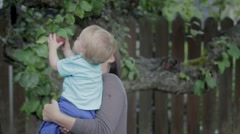 Child pulls an apple off a tree with mom Stock Footage