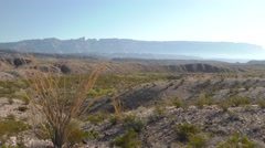 Slow Pan of American Desert Scenery at Big Bend National Park Stock Footage