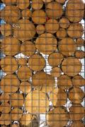 Wooden Disks in Metal Cage - stock photo
