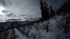 Aerial Drone: Winter Orchard Fresh Snow and Stormy Clouds Stock Footage
