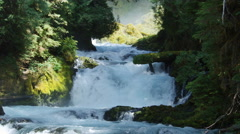 A low waterfall rushing between forested banks Stock Footage