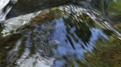 Close-up clear water flowing smoothly over a mossy boulder Stock Footage