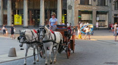 VIENNA - AUSTRIA, AUGUST 2015: hofburg palace street, horse carriage Stock Footage