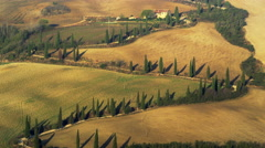 Famous Driveway Tuscany Road Vinyard Italy 4K Stock Video Footage Stock Footage