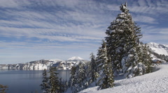 Snowy trees on a sunny winter day at Crater Lake Stock Footage