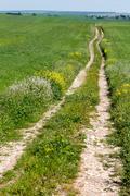 Tracks in Puglia - stock photo