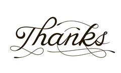 THANK YOU hand lettering -- handmade calligraphy - stock illustration