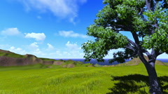 Tree on a hill,ocean and puffy clouds - stock footage